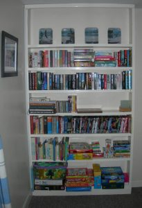 Bookcase with Books, Games and DVDs