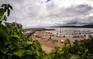 New Quay Harbour Beach